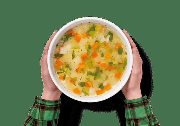 Sopa Juliana 2