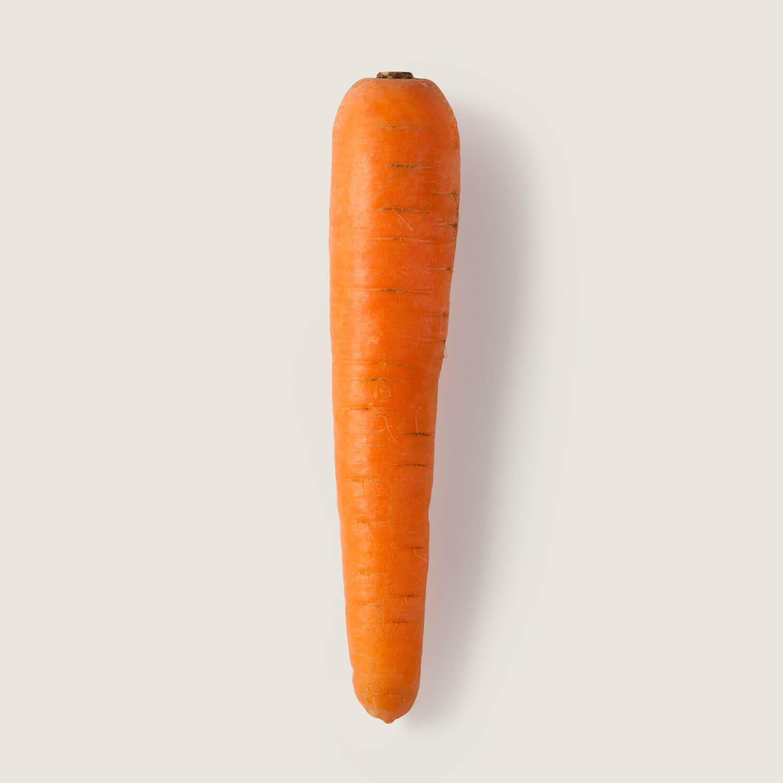 Zanahoria Trevijano Búsquedas relacionadas:verduras comida vegetales y frutas dibujos animados salud naranja ilustración fresco. zanahoria trevijano